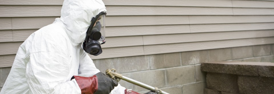 Pest Control Problem Solving